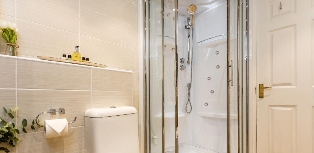 Family steam shower room